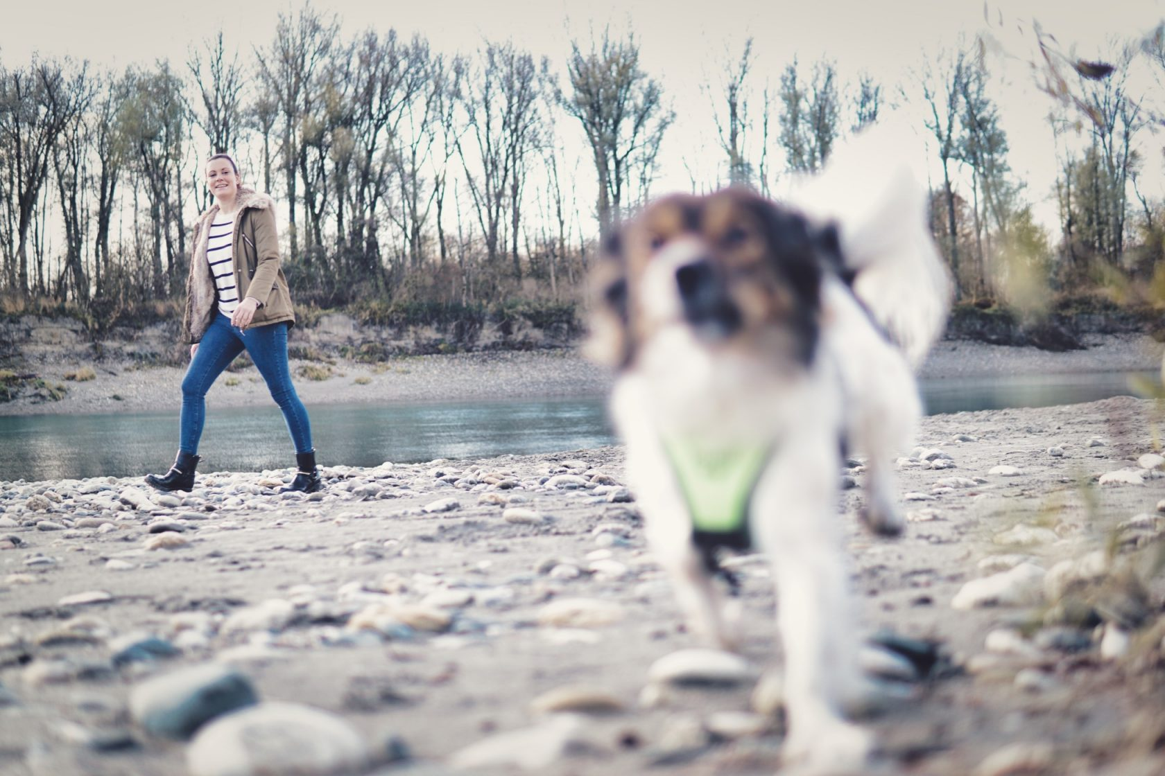 Hundetraining Pfoten Bande Waldkraiburg Hundeschule Mühldorf Wasserburg am Inn Töging
